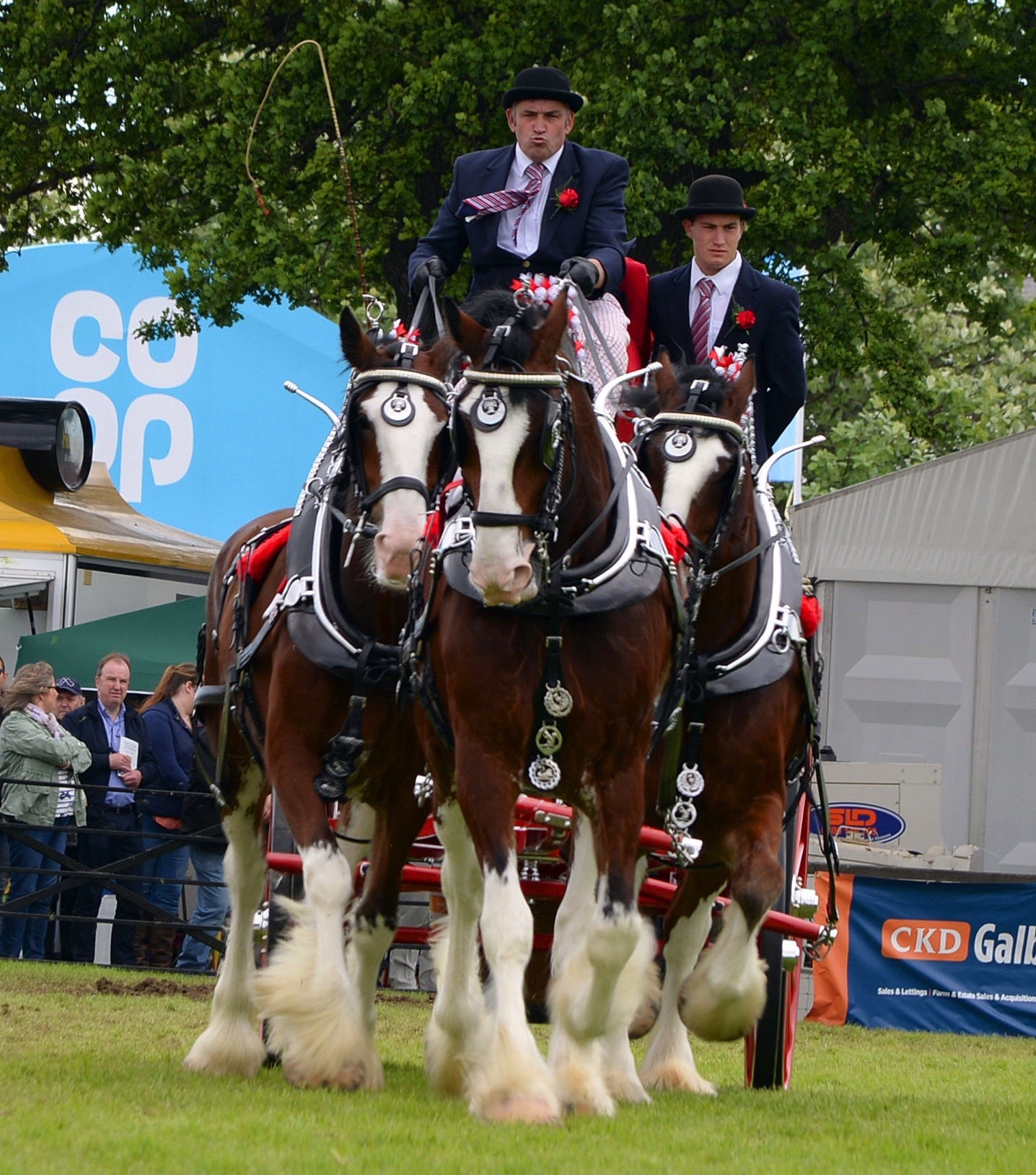 New trophy for farm carts - The Clydesdale Horse Society is to delighted to be able present a new trophy for the winner at the Royal Highland Show